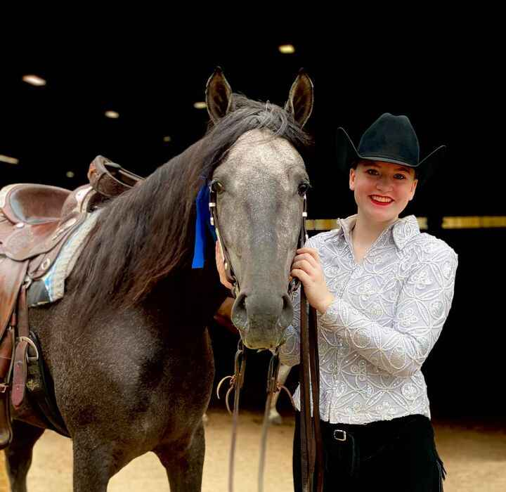 """""""El Lobo"""" to the blue in multiple classes at his first show! This beautiful stallion is now up for consideration for fal..."""