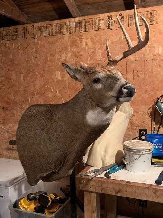 Mounted up and did a half rack rebuild on this big WISCONSIN buck