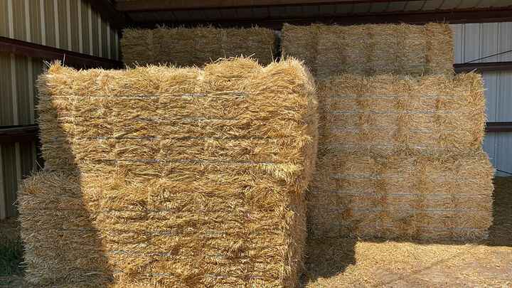 We have lots of straw!! They come in bundles of 18, so if you need, we can load a whole bundle or we can do individual b...